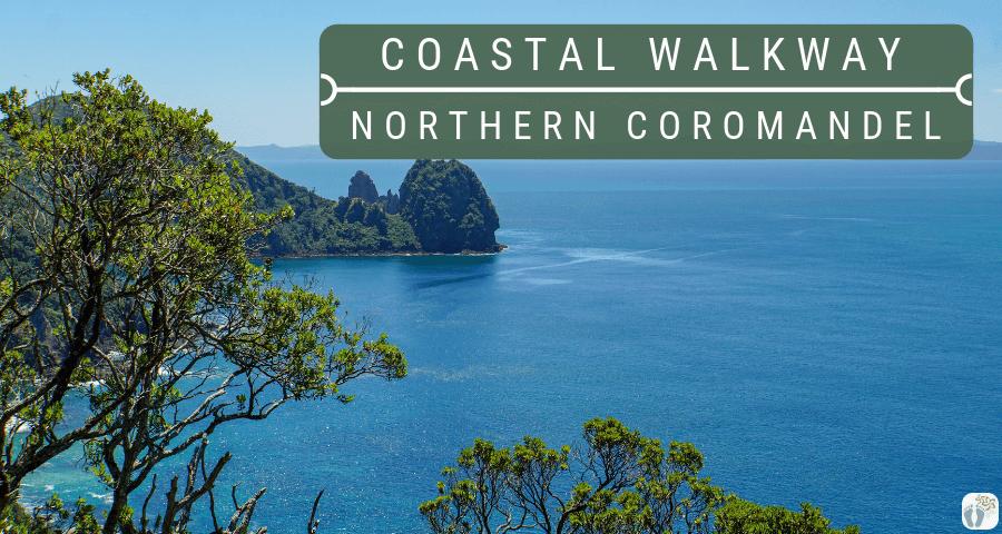 fantastische Küstenwanderung auf der Coromandel Peninsula: Roadtrip durch Neuseeland mit dem Bus – Tag 41 bis Tag 43
