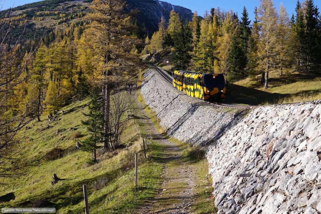 """Wanderung am Schneeberg: Schneebergbahn """"Salamander"""