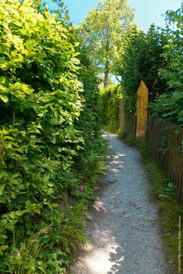 Fuschlsee: Beginn Rundwanderweg [10 Tage Roadtrip Salzburg]