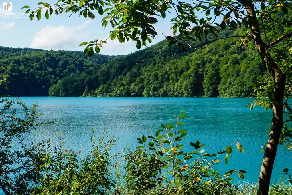 """Ausblick auf einen See im Nationalpark Plitvicer Seen - Kroatien   am rechten Rand des Bildes ein Baum der in die Mitte hineinragt; im Hintergrund des Bildes bewaldete Berge; im Vordergrund Pflanzen; links oben Text """"mado-unterwegs.com"""""""