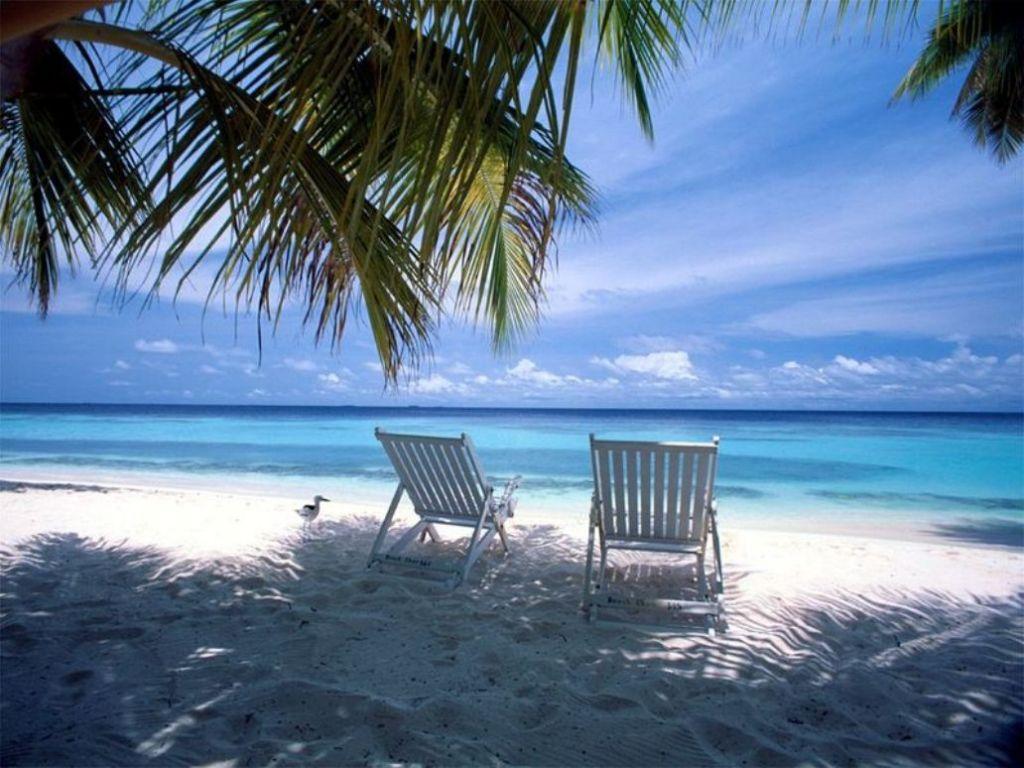 chairs for the beach mini papasan chair cushion life goes by  verisimilitude