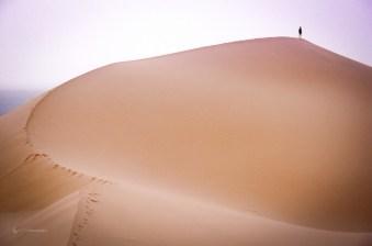 Point de vue sur l'océan de dunes