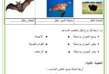 Photo of تقييم في الايقاظ العلمي السنة 1 الثلاثي 3 – التنقل عند الحيوانات – التنفس عند الانسان – الجذب و الدفع