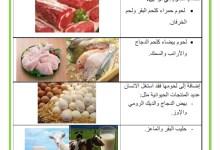 Photo of محور التغذية : مصادر الأغذية : الأغذية الحيوانية و الأغذية النباتية