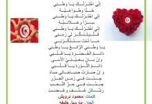 Photo of قصيدة إني اخترتك يا وطني – حب الوطن