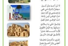 Photo of قصيدة في حب الوطن – وطني أحبك لا بديل لنزار قباني