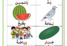 Photo of كلمات تحتوي حرف الياء