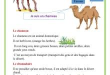 Photo of description – le chameau et le dromadaire
