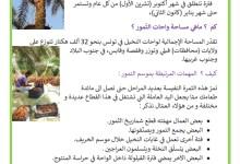 Photo of موسم جني التّمور في البلاد التونسيّة – فوائد التّمور