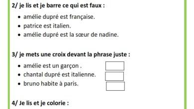 Photo of Exercices –  Français – 3 éme année – 1 er Semestre