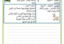 Photo of إنتاج قصة السلحفاة و الأرنب