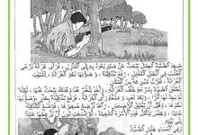 Photo of تقييم مكتسبات التلاميذ – قراءة و فهم –  الثلاثي الثالث – السنة الثانية