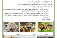 Photo of عالم الحيوانات : حيوانات السفانا