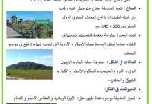 Photo of المحميات الوطنية في البلاد التونسية : اشكل و بوهدمة