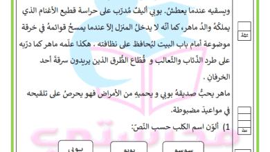 Photo of دعم وعلاج قراءة  السنة الثانية – العناية بحيوان أليف