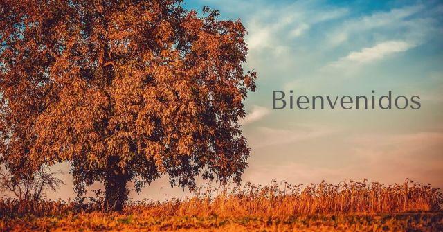 blogs nuevos, septiembre 2019, madresfera