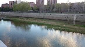 madridrio7
