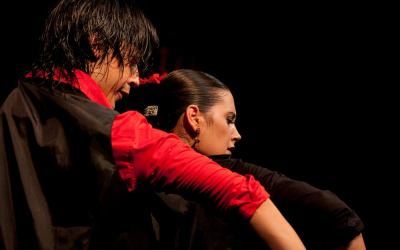 TABLAO FLAMENCO LAS TABLAS