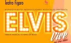 ELVIS VIVE en el Teatro Fígaro