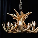 Whitetail Low Profile Chandelier Mad River Antler