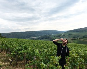 fred-buisson-snacking-in-the-vineyards