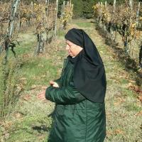 Sister Maria Grazia in the vineyard 12.03.11