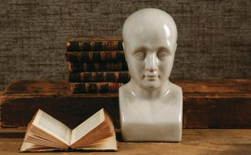 Phrenology Head | A Giveaway from The Inglenook Decor