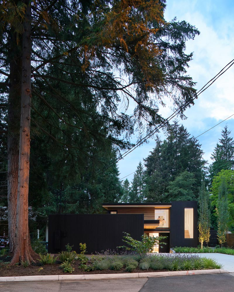 Shelter Residential Design + Naikoon Contracting
