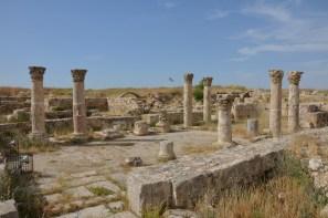 Citadel (6)