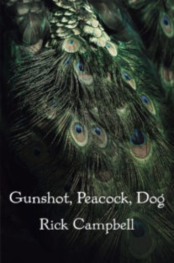 Gunshot, Peacock, Dog--poetry by Rick Campbell