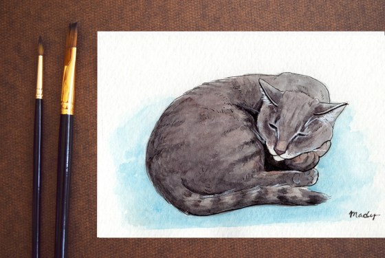 Cat, ink and watercolor, 2020
