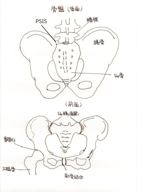 産後の骨盤矯正と一般的な骨盤矯正