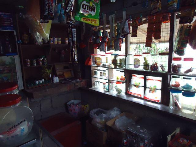 フィリピン旅行写真426_R