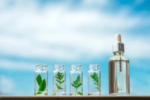 Como é que um homeopata pode ajudá-lo a ter uma vida melhor