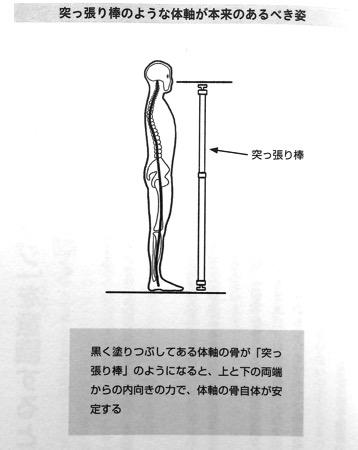 突っ張り棒のような体軸 第2章P45