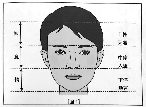 図1 顔の三停の区分け 人相学の完全独習 第一章
