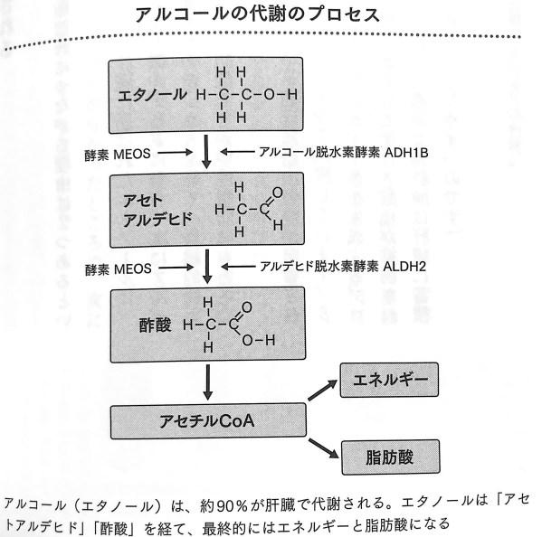 図3 アルコールの代謝のプロセス 最高の飲み方 第2章