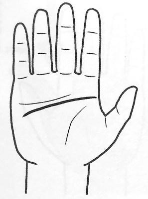 図5 地の手タイプ① 手だけで本性がわかる 第3章
