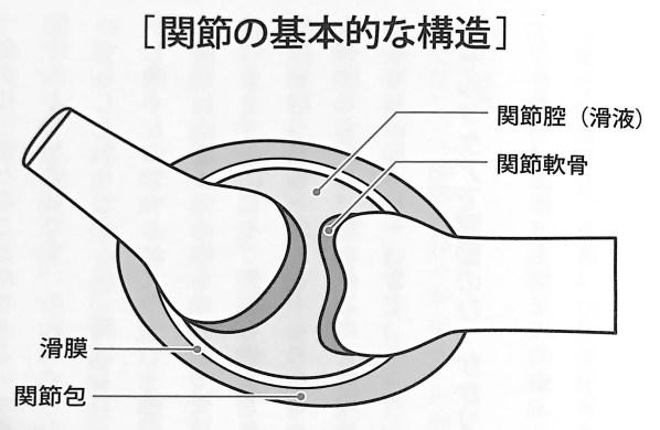 図1 関節の基本的な構造 荷重関節をゆるめる 第1章