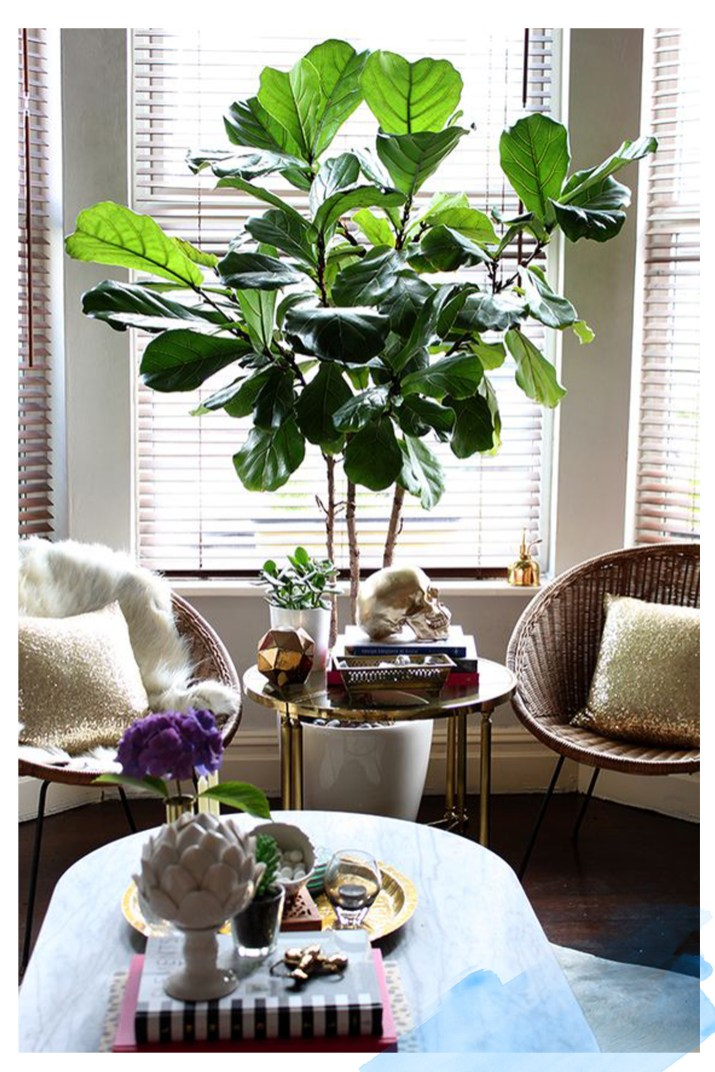 Oversized Plant Home Decor 1