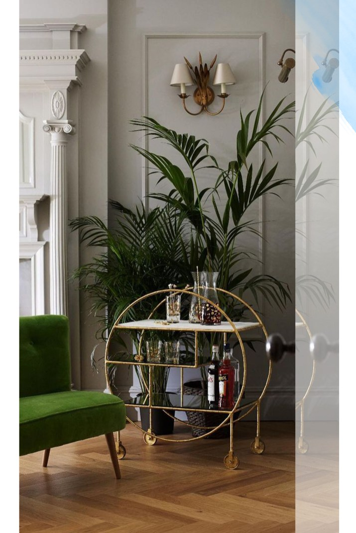 Oversized Plant Home Decor 3