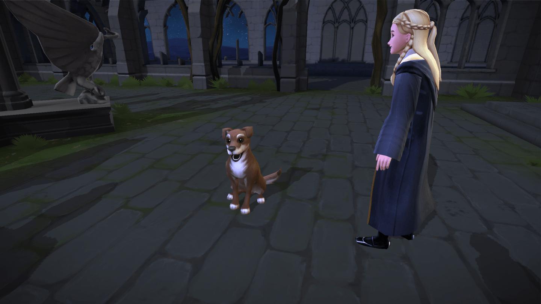 Hogwarts Mystery Animagus 1