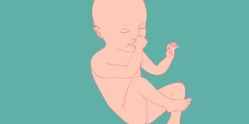 34 semanas de gestação