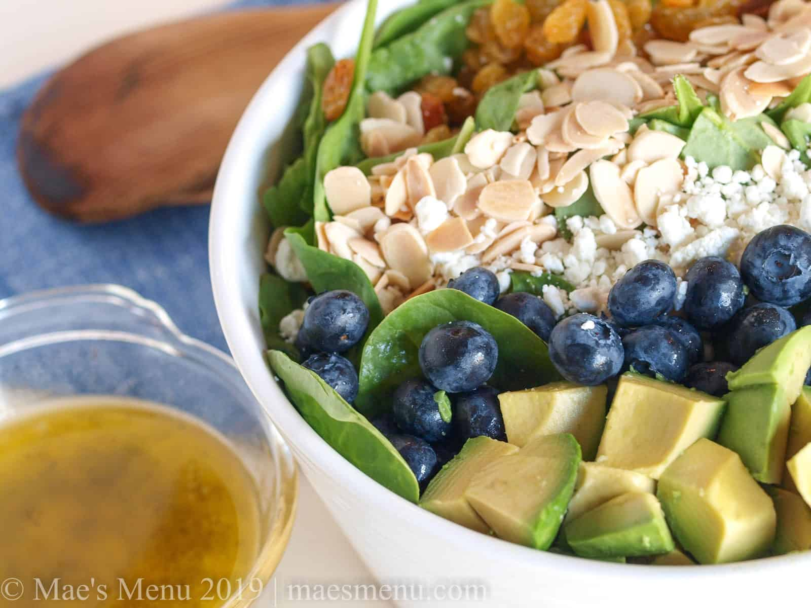 Large white bowl of Blueberry Avocado Spinach Salad.