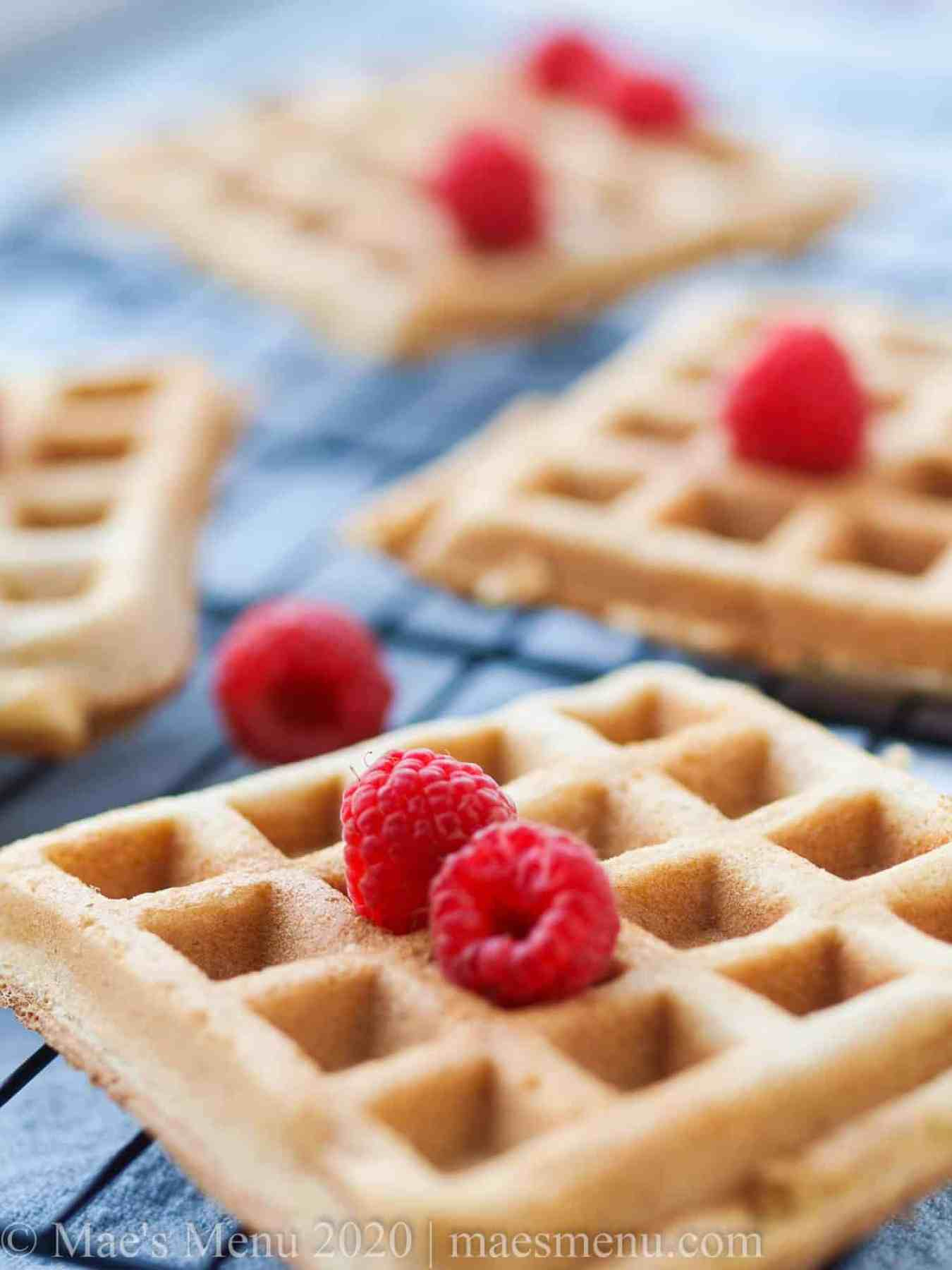 Crispy and fluffy whole wheat belgian waffles on a cooling rack.
