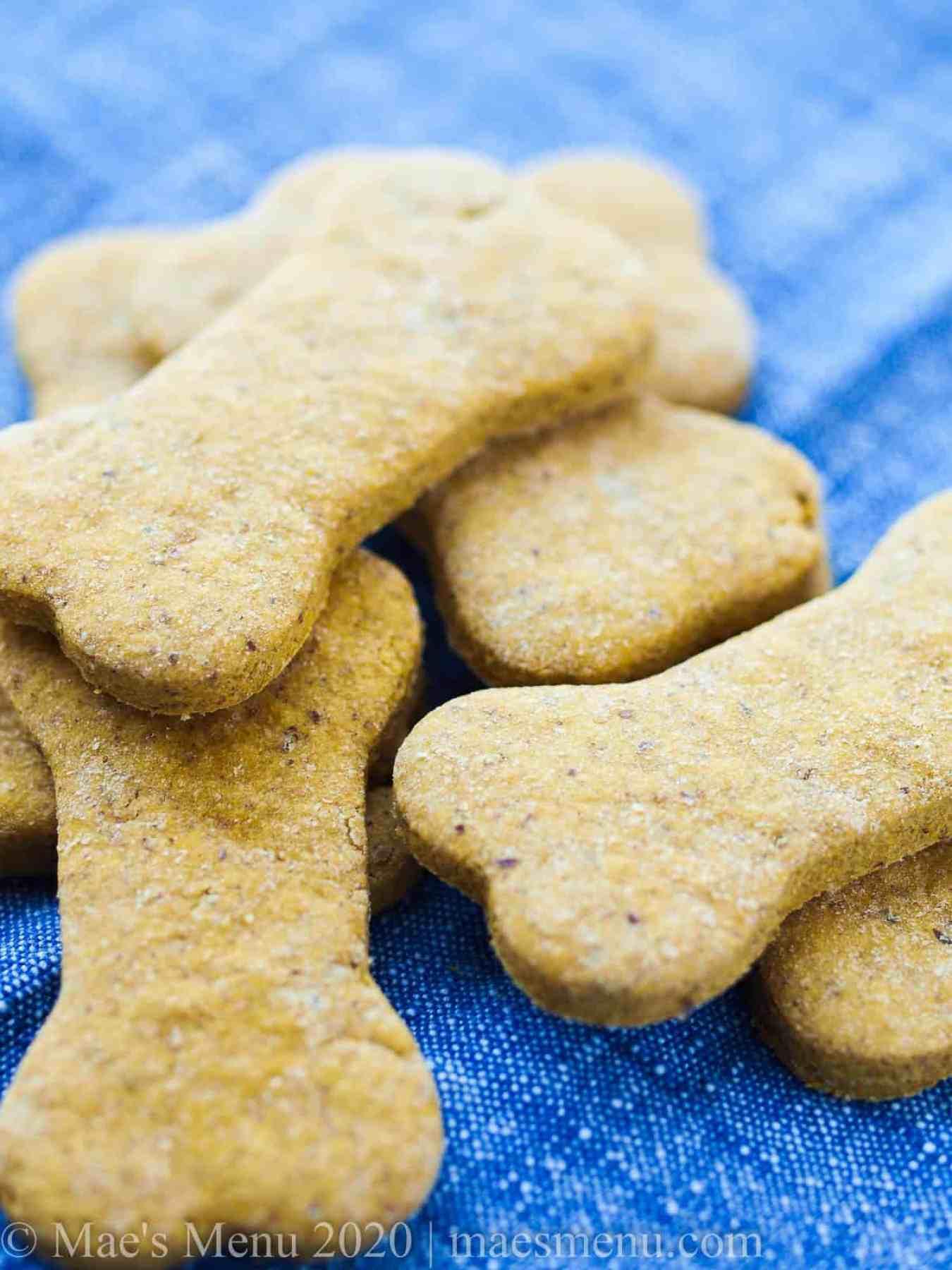 up-close shot of peanut butter pumpkin dog treats.