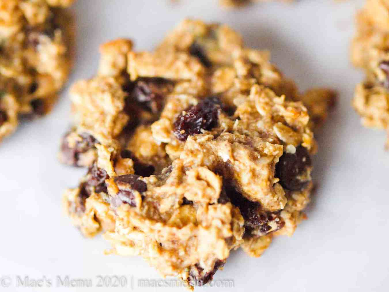 up-close picture of oat protein cookies