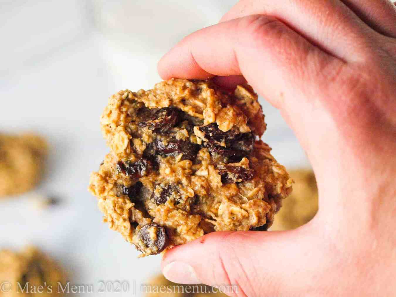 A hand holding an oatmeal protein cookie