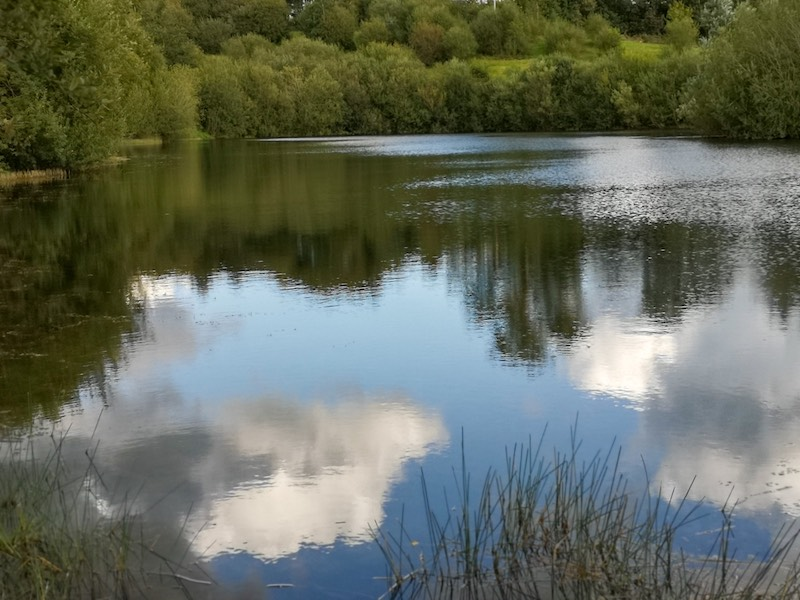 Be inspired by nature at Maes Mynan Park