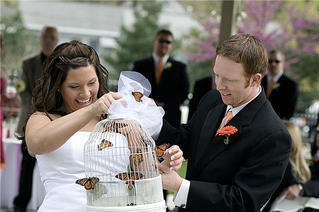 La ceremonia de las mariposas